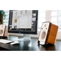 Polk's Stylish New Desktop Speakers