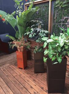 James-Omni-Planters.jpg