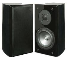 EMP-Tek-E5Bi-bookshelf-speaker-review-black-ash-small.jpg